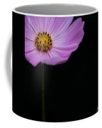Cosmos On Black Coffee Mug