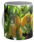 Costa Rica Star Fruit Known As Carambola Coffee Mug