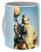 Cotton Field 13 Coffee Mug