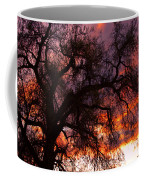 Cottonwood Sunset Silhouette Coffee Mug