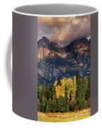 Cottonwoods Fir Trees Fall Color Grand Tetons Nat Coffee Mug by Dave Welling