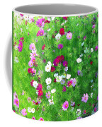Country Cosmos Coffee Mug
