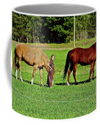 Country Girls Coffee Mug