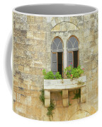 Coupled Windows Coffee Mug
