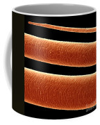 Cow Hair, Sem Coffee Mug