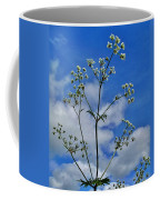 Cow Parsley Blossoms Coffee Mug