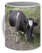 Cow Tow Coffee Mug