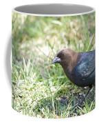 Cowbird Coffee Mug