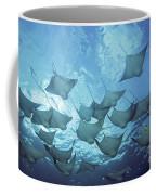 Cownose Rays Coffee Mug