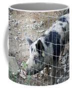 Cowpig On The Farm Coffee Mug