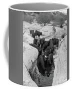 Cows In The Hole Coffee Mug