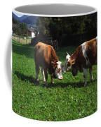 Cows Nuzzling Coffee Mug