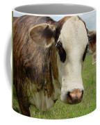 Cows8937 Coffee Mug