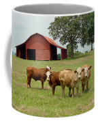 Cows8954 Coffee Mug