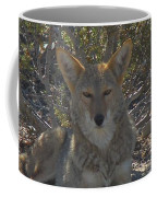 Coyote 2 Coffee Mug