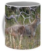 Coyote Coffee Mug