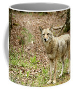 Coyote In Cades Cove Coffee Mug