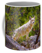 Coyote In The Rocky Mountain National Park Coffee Mug