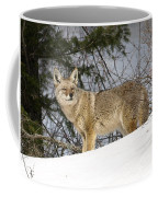 Coyote In Winter Coffee Mug