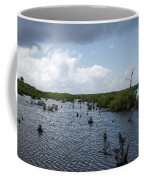Ominous Clouds Over A Cozumel Mexico Swamp  Coffee Mug