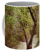 Cozy Stream In American Fork Canyon Utah Coffee Mug