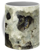 Crab Hiding In A Rock On The Seashore Coffee Mug