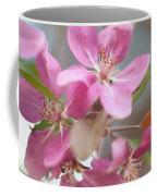 Crabapple Tree  Pink Flowers Coffee Mug
