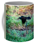 Grackle In The Morning  Coffee Mug