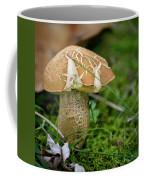 Crackles Squared Coffee Mug