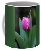 Cradled Pink Tulip Coffee Mug