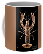 Crawfish In The Dark - Sepia Coffee Mug