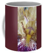 Cream And Purple Iris Coffee Mug