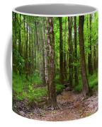 Creek Bed Coffee Mug