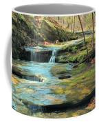 Creek In Dappled Light At Don Robinson State Park 1 Coffee Mug