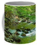 Creek In Great Smoky Mountains National Coffee Mug