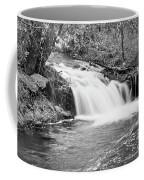 Creek Merge Waterfall In Black And White Coffee Mug