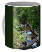 Creek On Mt. Spokane 1 Coffee Mug
