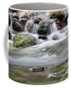 Creek With Rocks Spring Scene Coffee Mug