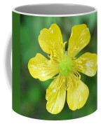 Creeping Buttercup Coffee Mug