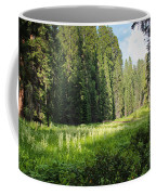 Crescent Meadow In Sequoia Coffee Mug