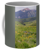 Crested Butte Valley Coffee Mug