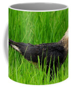 Crested Caracara 4 Coffee Mug