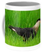 Crested Caracara 5 Coffee Mug