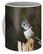 Crested Tit Coffee Mug