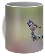 Crested Tit Lichen Coffee Mug
