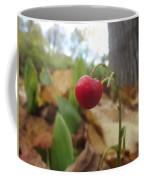 Crimson Berry Coffee Mug