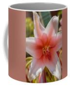 Crinum Lilies Coffee Mug