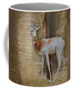 Critically Endangered Dama Gazelle Coffee Mug