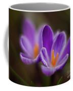Crocus Glory Coffee Mug