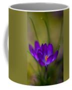 Crocus Petals Coffee Mug